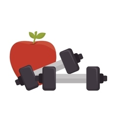 weight lifting equipment icon vector image vector image