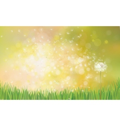 Dandelion spring background vector