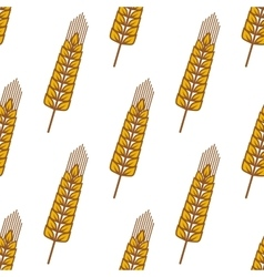 Wheat ears with ripe grains seamless pattern vector