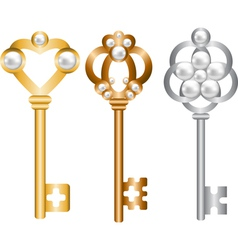 Antique metal skeleton keys set vector