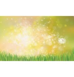 dandelion spring background vector image vector image