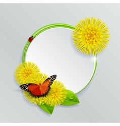 Floral Banner with Butterfly and Ladybug vector image