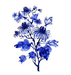 hand drawn beautiful wildflowers isolated on white vector image vector image