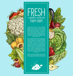 Natural vegetables and organic fruits banner vector