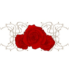three roses vector image vector image