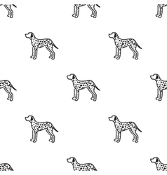 Dalmatian icon in black style for web vector