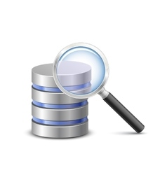 Database search icon vector image