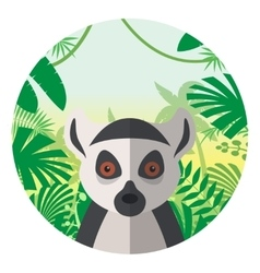 Lemur on the jungle background vector