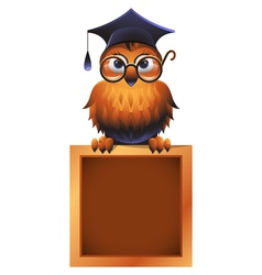 Wise Owl Atop A Chalkboard vector image