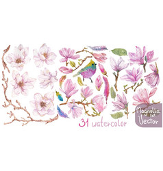 Watercolor branches of magnolia beautiful flowers vector
