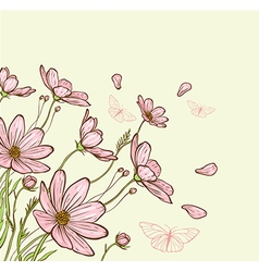 Decorative background with pink cosmos flowers vector