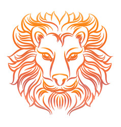 Colorful sketch of lion head vector