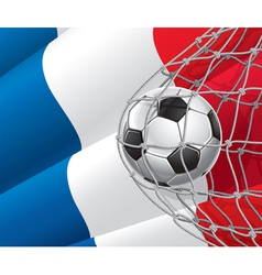 Soccer goal and France flag vector image