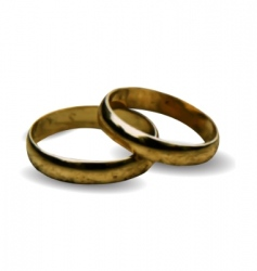 3d wedding rings vector vector image
