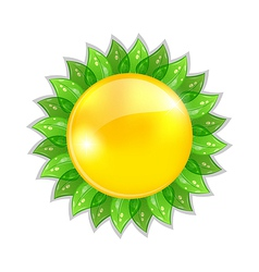 Abstract sun with leaves isolated on white vector image vector image