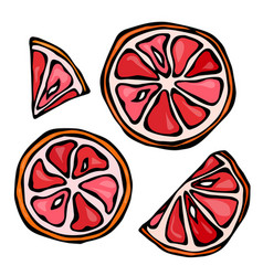 set slices of grapefruit isolated on white vector image vector image