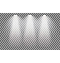 Stage illuminated spotlight vector image vector image