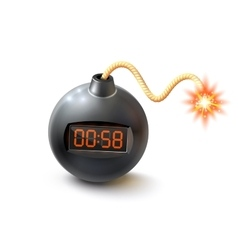 Bomb with timer vector