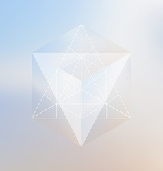 Abstract isometric cube and prism with the vector