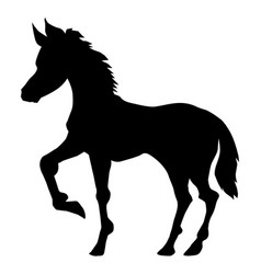 Foal side view vector