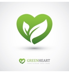 Green heart with leaves vector