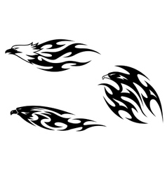 Predator birds tattoos vector