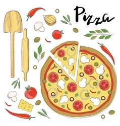 Pizza isolated on a white vector