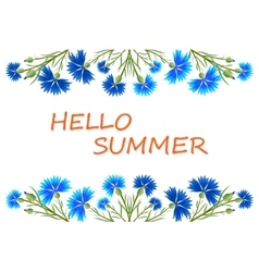 Banner Hello Summer vector image