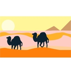 Camels who go through the wilderness vector