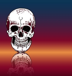 Drawing human skull with reflection on color vector