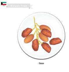 Dates fruit a popular fruit in kuwait vector