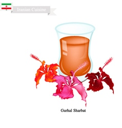 Gurhal Sharbat or Iranian Drink Made From Hibiscus vector image