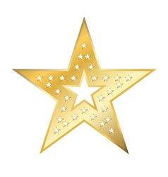 American star sign vector