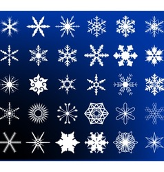 Snow flake storm vector