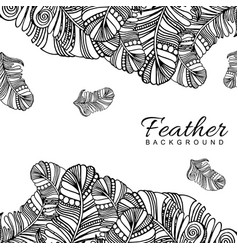 hand drawn black white feather background vector image