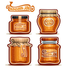 Mandarin jam in jars vector