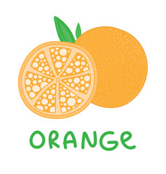Square card with hand drawn orange fruit vector