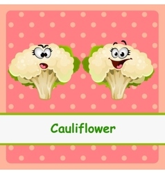 Cauliflower funny characters on pink background vector image