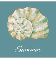 Watercolor sea shell vector