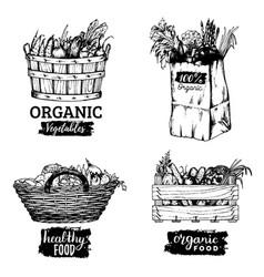 organic vegetables images set farm vector image vector image