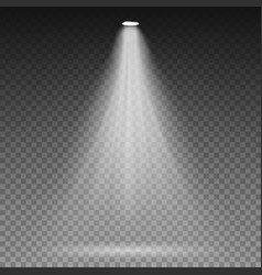 white beam lights spotlights transparent vector image
