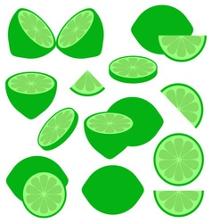 Lime icons vector