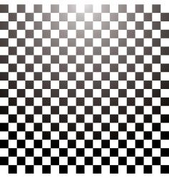 checkered grid tile vector image vector image