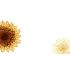 Yellow sunflowers flower element for design vector image vector image