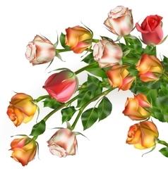 Celebration background with flowers EPS 10 vector image