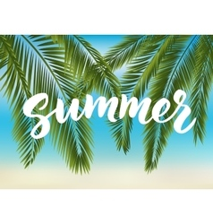 Summer hand drawn brush lettering vector