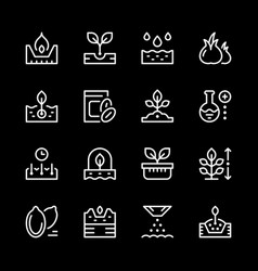 set line icons of seed and seedling vector image