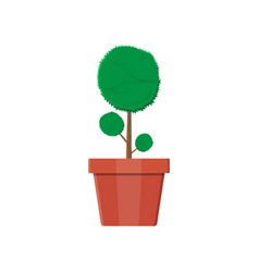 Plant tree in flower pot decoration home plant vector