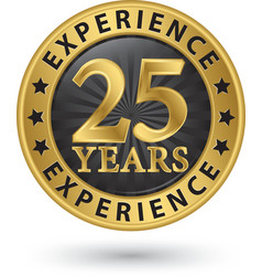 25 years experience gold label vector image