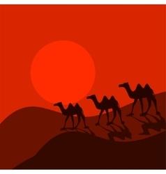 Camel caravan in desert cartoon vector